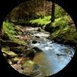 Environmental protection