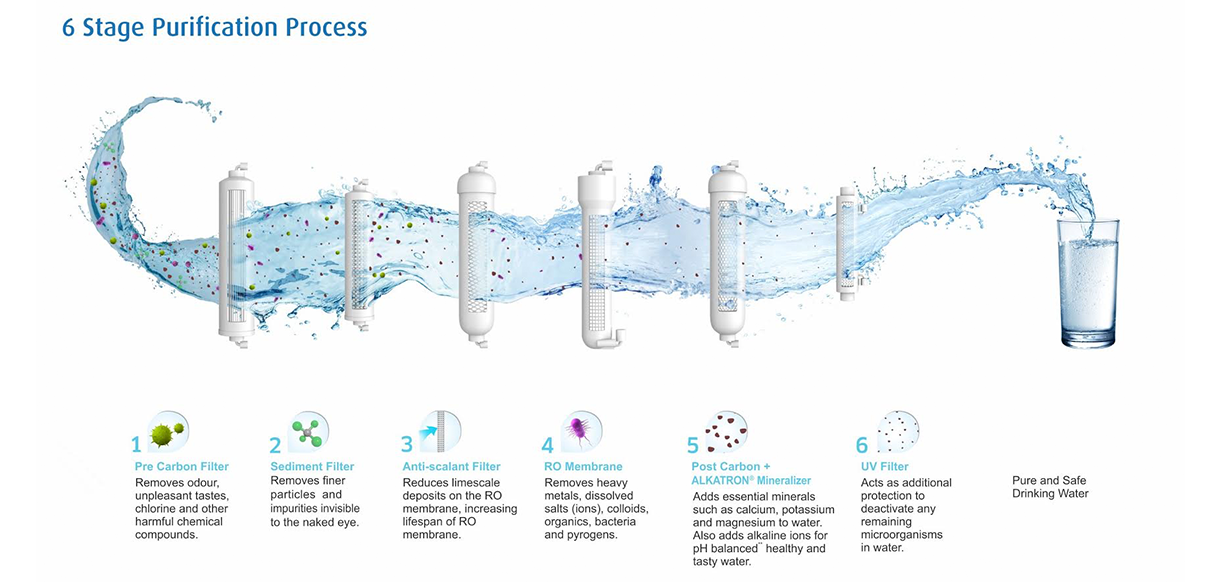 Purification Process Infographic